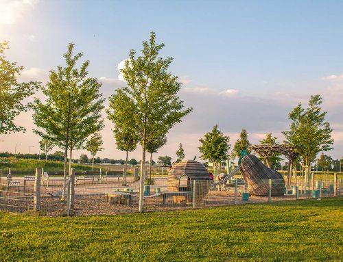 Entstehung eines neuen Stadtteils – Seestadt Aspern
